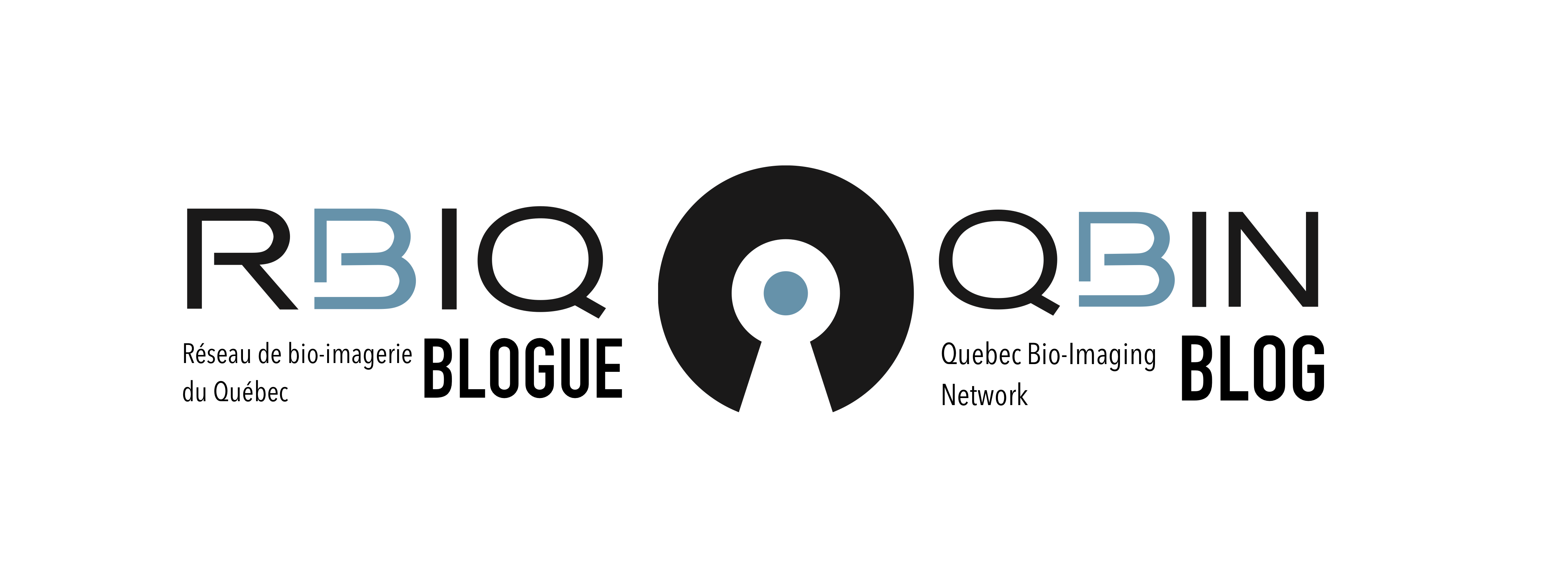 Blogue du RBIQ | QBIN blog