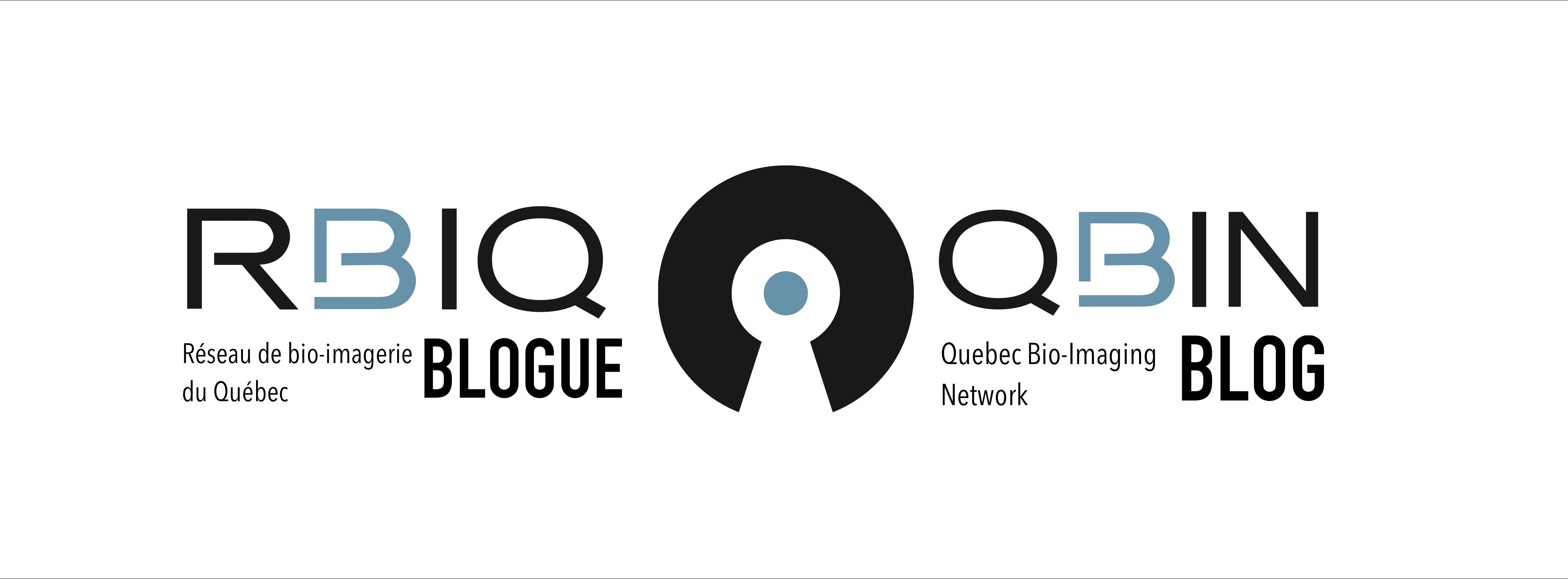 Blogue du RBIQ | QBIN blog